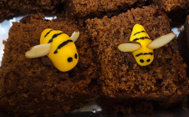 Temple David Weigeropoly Honeycake 2 (1 of 1)