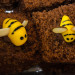Temple David Weigeropoly Honeycake 2 (1 of 1) thumbnail