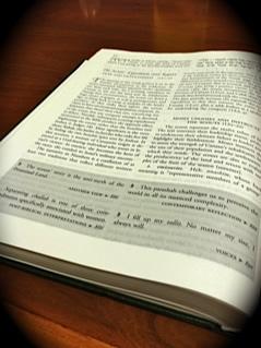 Torah Cricle 5